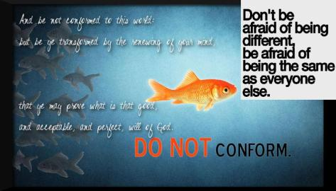 do-not-conform-fish